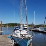 Sabredance of Oare, on pontoon